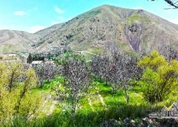 محله های کردان